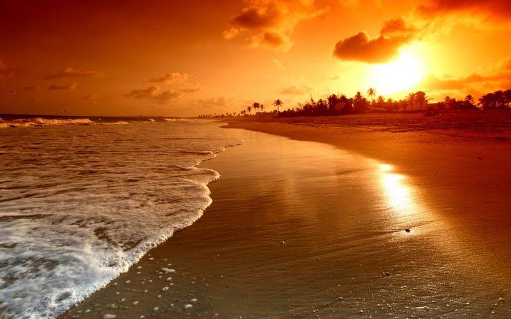 Tierra/Naturaleza Playa  Fondo de Pantalla