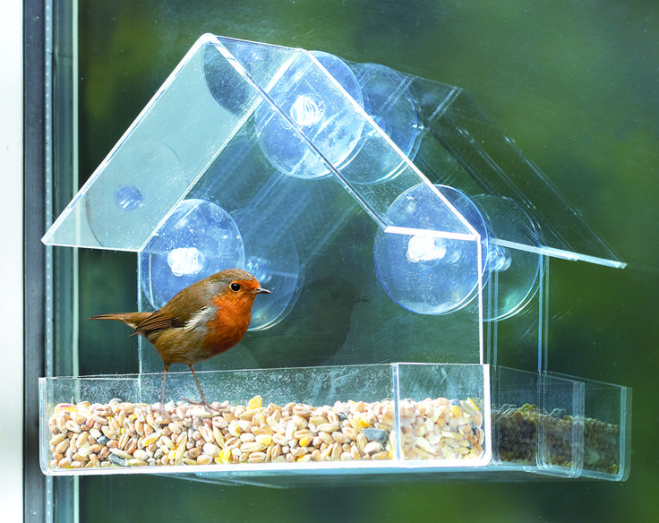 Window Bird Feeder With FREE 1.8kg Bird Seed £10 Allows you to observe a variety of wild birds feeding up close and is also ideal if you have limited space outside. The clear plastic feeder is complete with feed tray and 3 suction cups to secure to your window. Comes complete with 1.8kg bird seed.  KLife