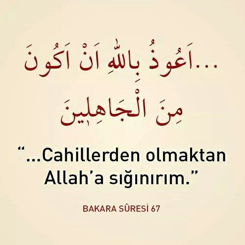 Cahillerden olmaktan Allah'a sığınırım. [Bakara Sûresi 67]