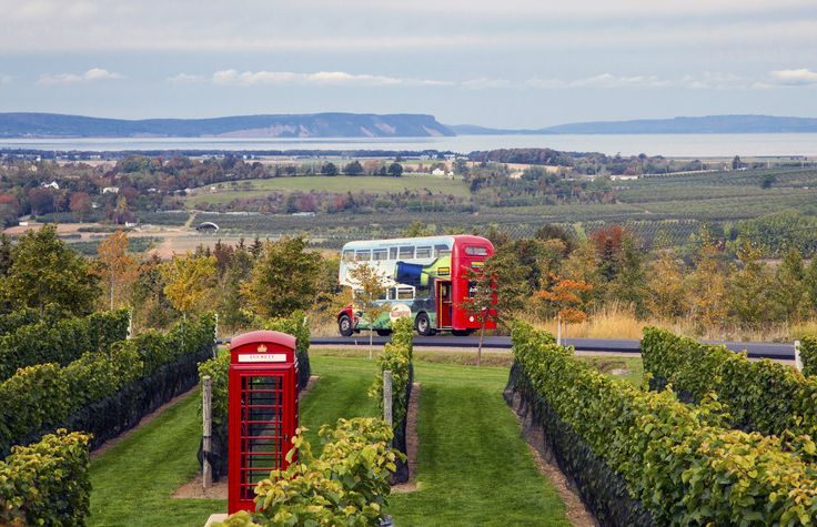 Wolfville Magic Winery Bus - Wolfville, Nova Scotia