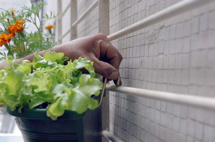 O primeiro passo para fazer uma horta vertical é separar o material necessário. Isso depende de suas habilidades de jardineiro e do quanto você deseja plantar. O kit básico inclui pá, tesoura para poda, vaso e terra Foto: Niels Andreas/ PrimaPagina