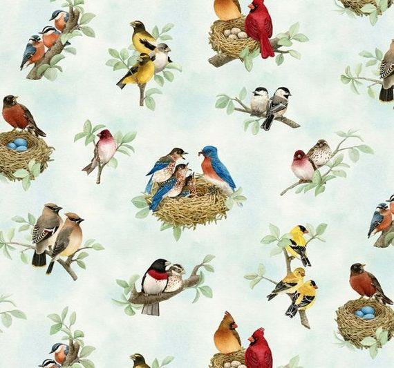 Tessuto di cotone di splendidi uccelli dallo di CarolinaCottonCo