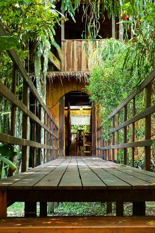 Tree House vacation rental, Cahuita, Costa Rica