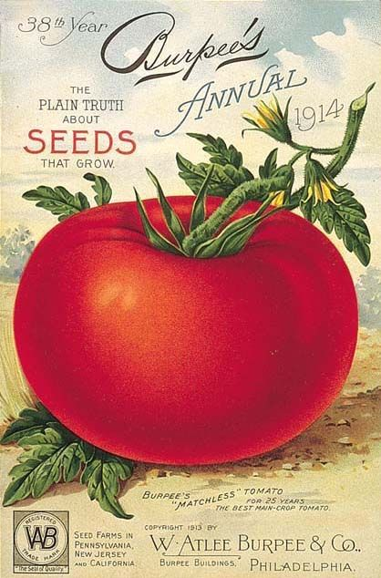 Vintage seed catalog covers. - Ah, back in the day when tomatoes had real flavor.