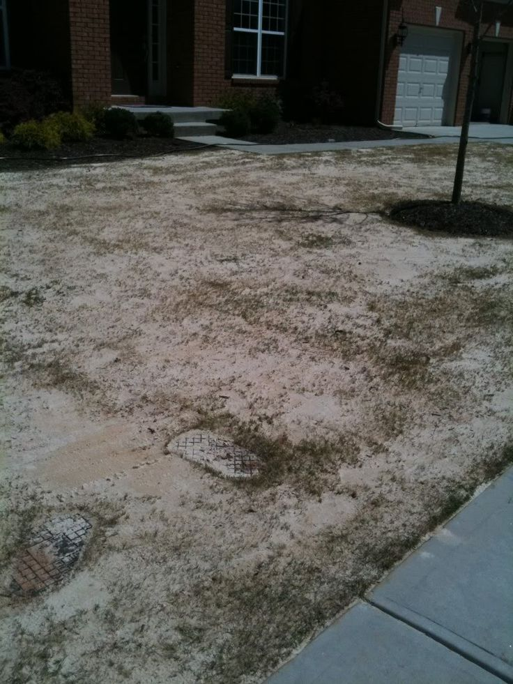Landscaping Leveling Yard : Leveling the lawn with sand backyard fun