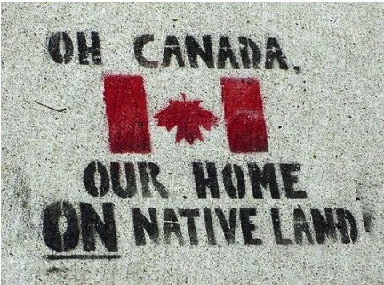 thentheysaidburnher:    Settlers in solidarity with the indigenous peoples of Canada and worldwide.  —IdleNoMore information packet