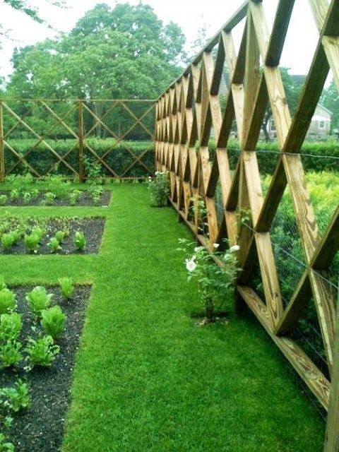 great looking fence idea. Minimal wood used, structurally strong with 2x4s and a stock fencing and lots of light allowed to come in.