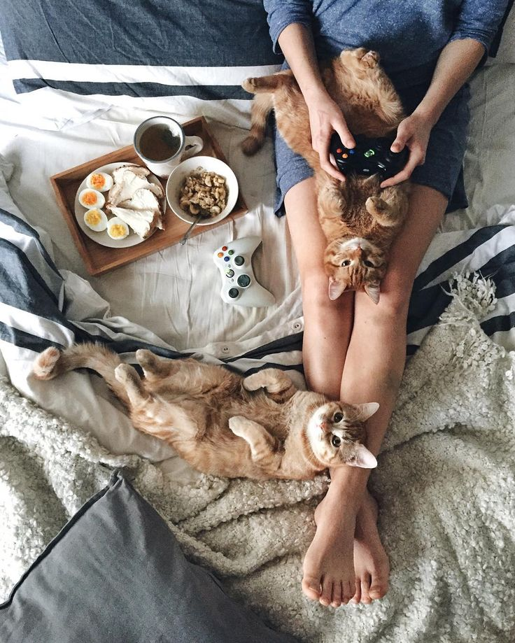 If the controller was knitting and a book this would be my version of heaven