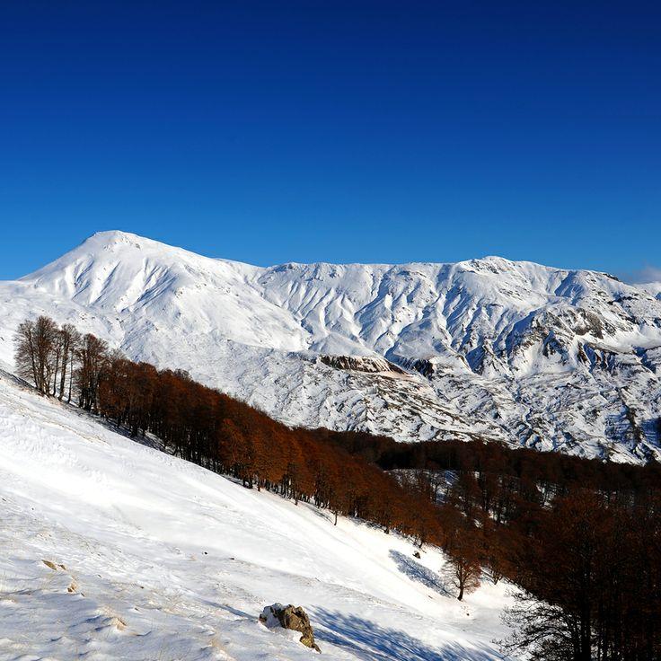 Mt Grammos