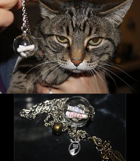 Mya: the Cat... necklace inspired. Thank you Maria Solange ♥
