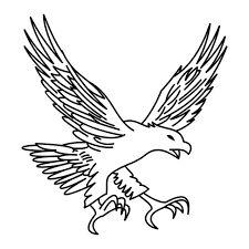 Výsledok vyhľadávania obrázkov pre dopyt desenhos de aguias para tattoo