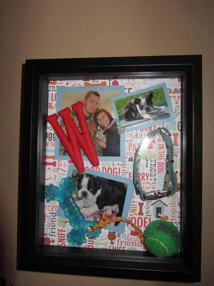 how to make a pet memorial shadow box