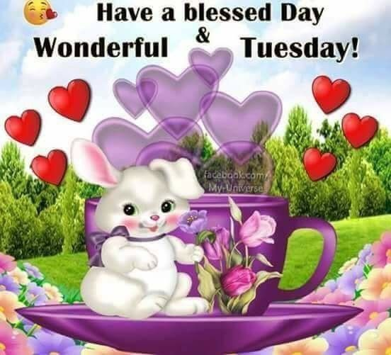 Have A Blessed Day Wonderful Tuesday Tuesday Tuesday Quotes