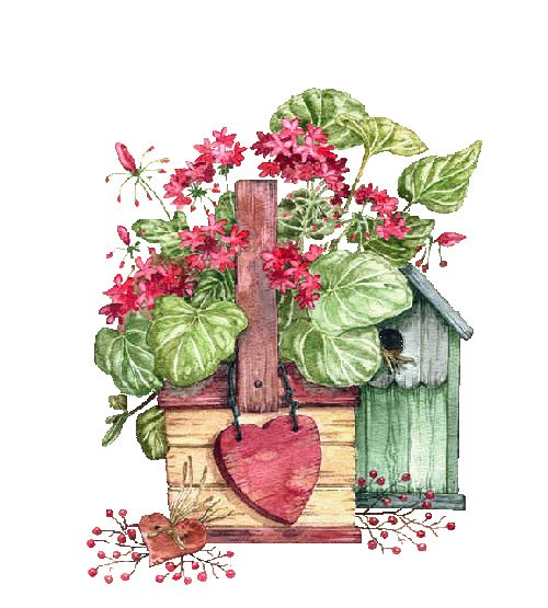 1000+ Images About . ⊱╮Garden Bits On Pinterest