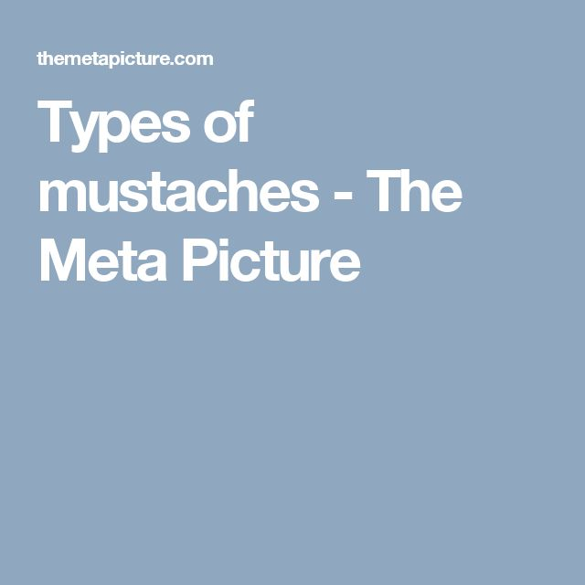 Types of mustaches - The Meta Picture