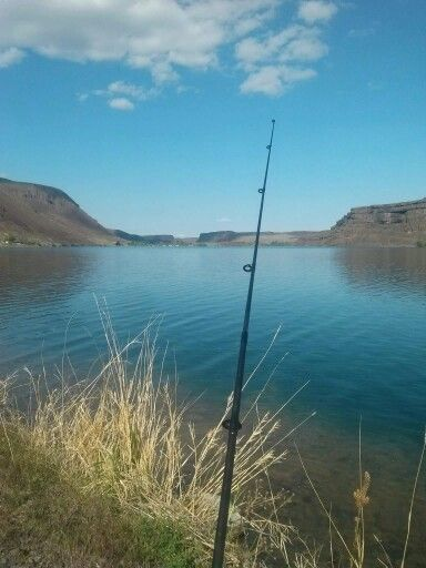 1000 images about my fishing trophies farm life eastern for Fishing lakes in washington
