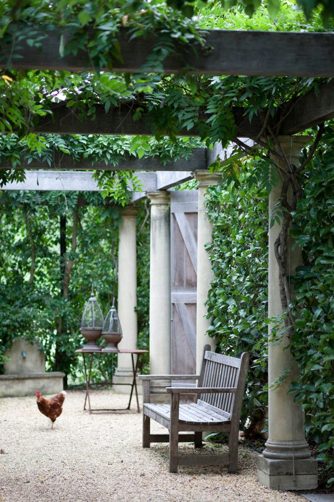 17 best images about garden back yard front porch patio on for Arboles de sombra para jardin