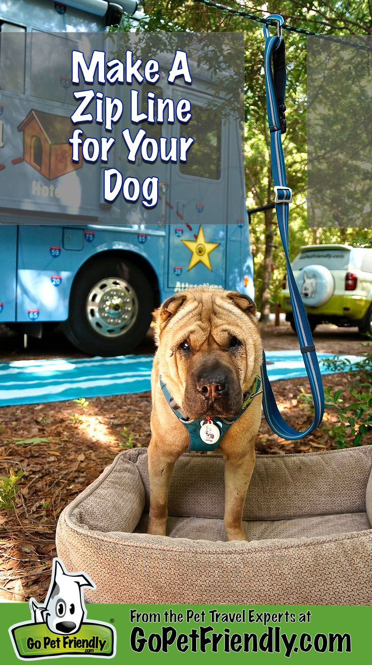 Keeping you dog safe at your campsite, in the back yard, or at the park is a cinch with this easy DIY zip line!