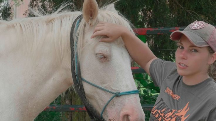 Horses bring healing NC filmmaker shines light on equine assisted therapy