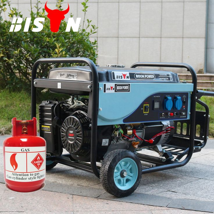 """BISON(CHINA) 5kw Portable Gas Generator, 5kw Handy LPG generator, 5kw Gasoline Generator"""