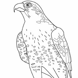 12 best images about Coloring Pages