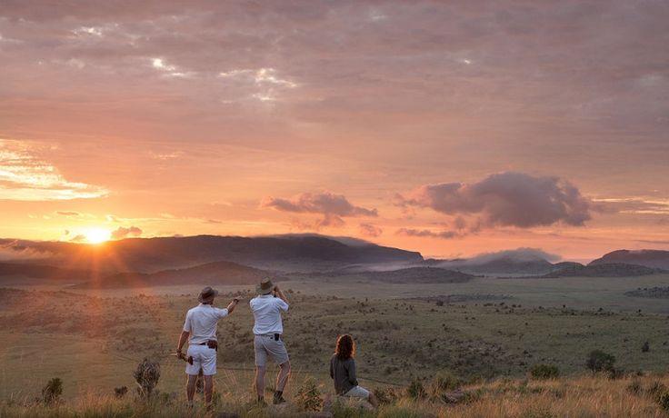 Mhondoro Lodge, Welgevonden Game Reserve, Waterberg, Limpopo, South Africa