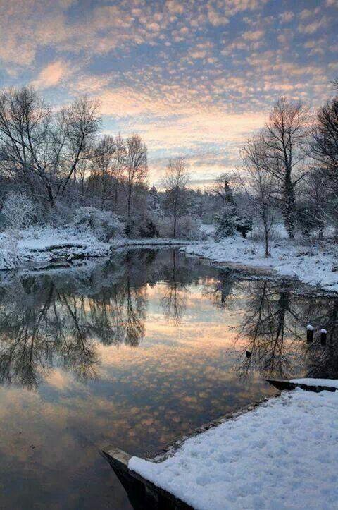 Nature Everything S Quiet Winter