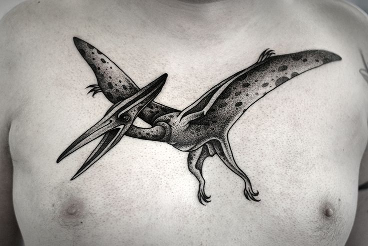 pterodactyl!!! by Kamil Czapiga