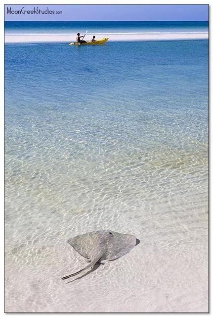 Grayton beach :)