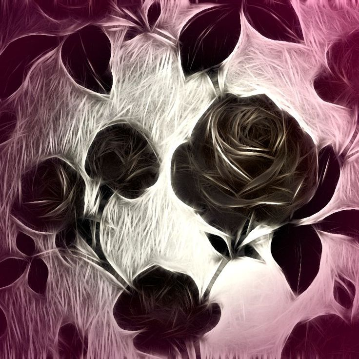 Rose among thorns by shalisa   Roses given an abstract fractalius effect. Digitally altered photograph creating thorn like texture. rose purple thorns black lilac mauve pretty