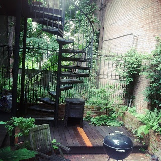 Backyard garden, Brooklyn, NY.