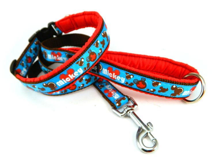Mickey tape leash and collar.