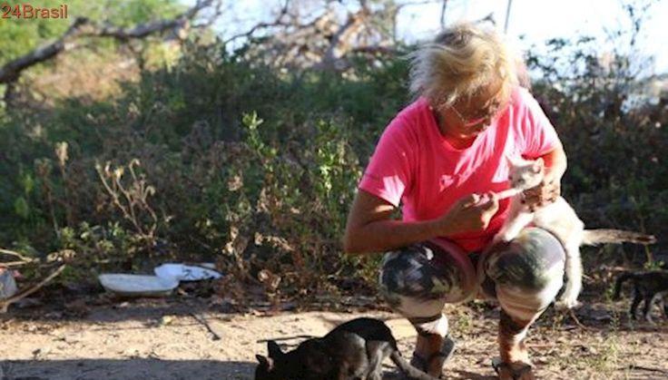 Mulher dedica a vida ao cuidado de gatos abandonados em Fortaleza