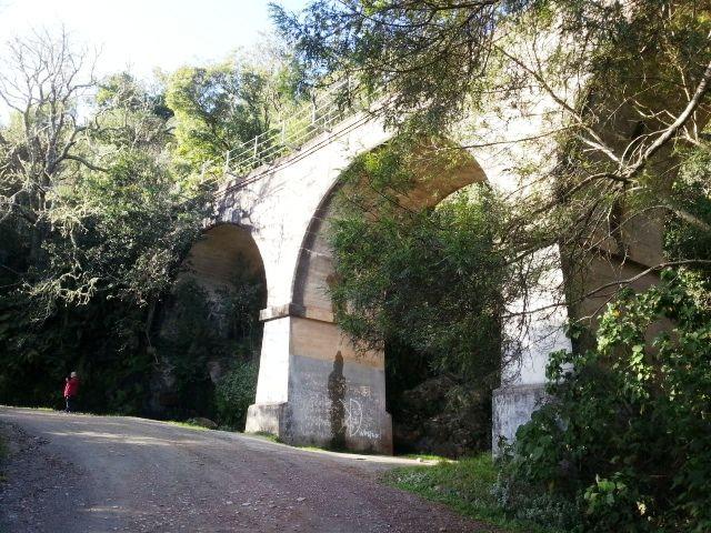 Viaduct on Montagu Pass