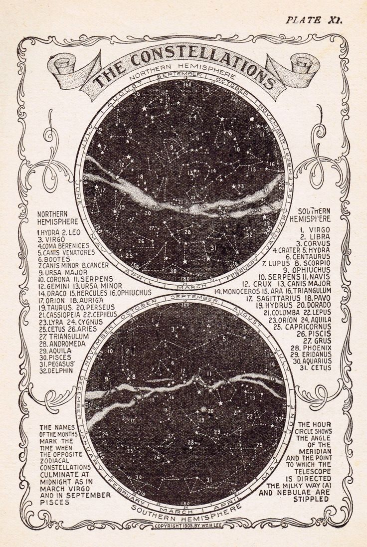 Star Constellations Free Printable - from Knick of Time @knickoftime.net