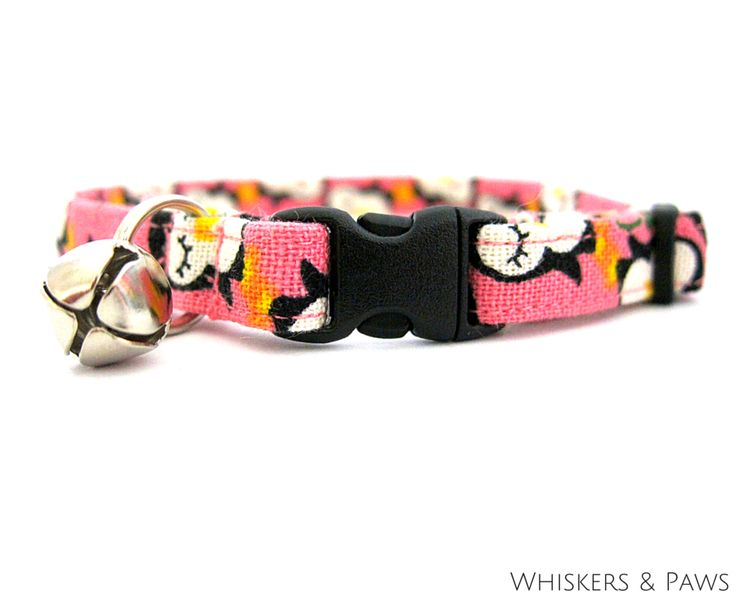 Adorable Penguins In Pink Cat Collar