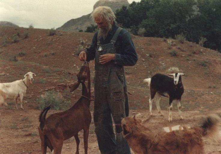 'Bir ülkede padişah çoban kadar düşünemez ve iyi ile kötüyü; dost ile düşmanı ayıramazsa o saltanat ve memlekete zarar gelir.' Sadi Şirazi ~Bostan