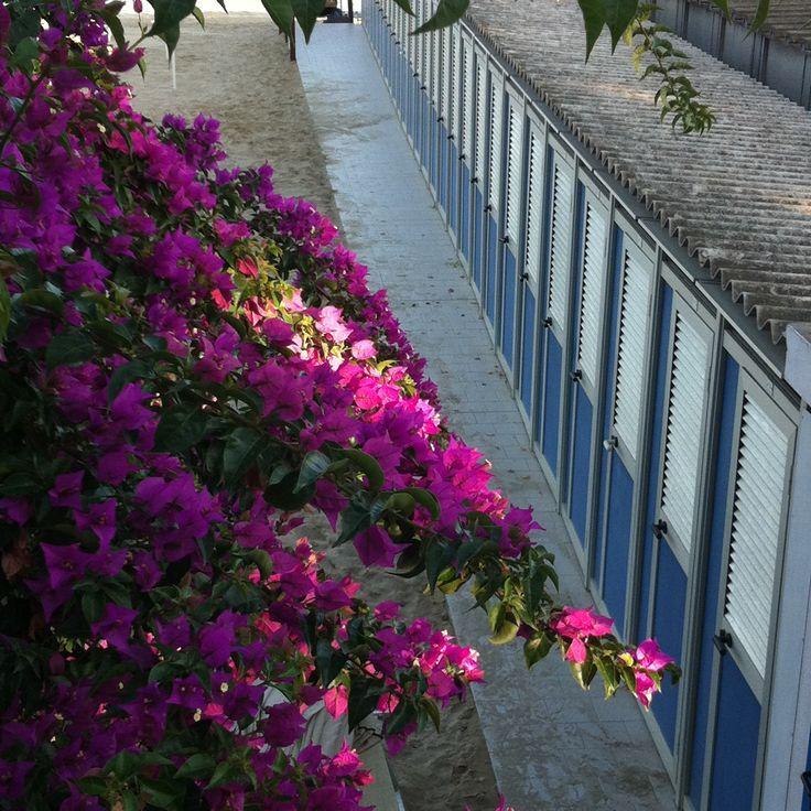 Gamla badhytter i San Remo