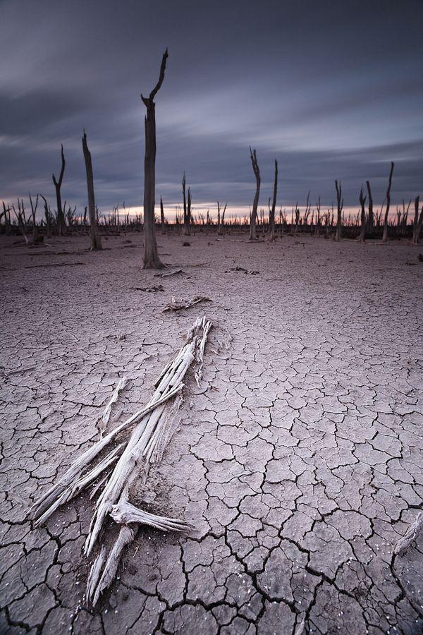 A dry salt lake near Dowerin, Western Australia