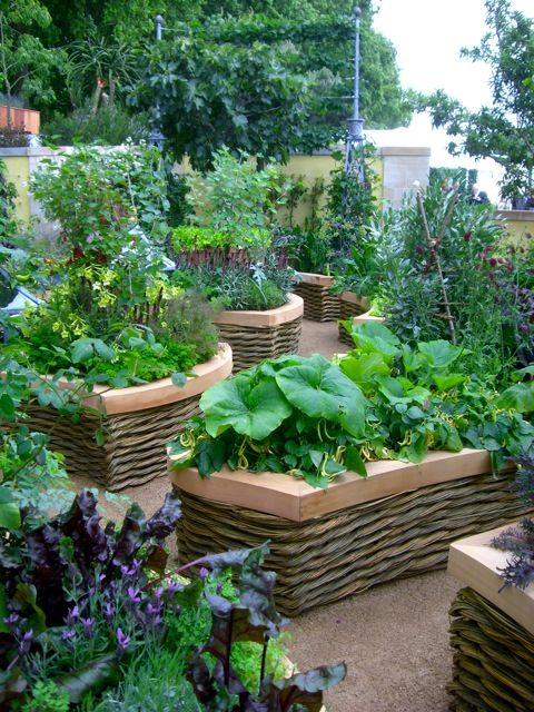 1000 images about unique raised beds on pinterest