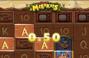 This online slot is a 5 reel and 40 payline video slot. It is powered