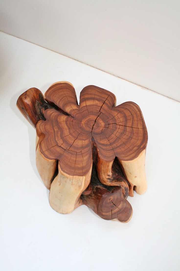 Reclaimed Cedar Tree Stump Table