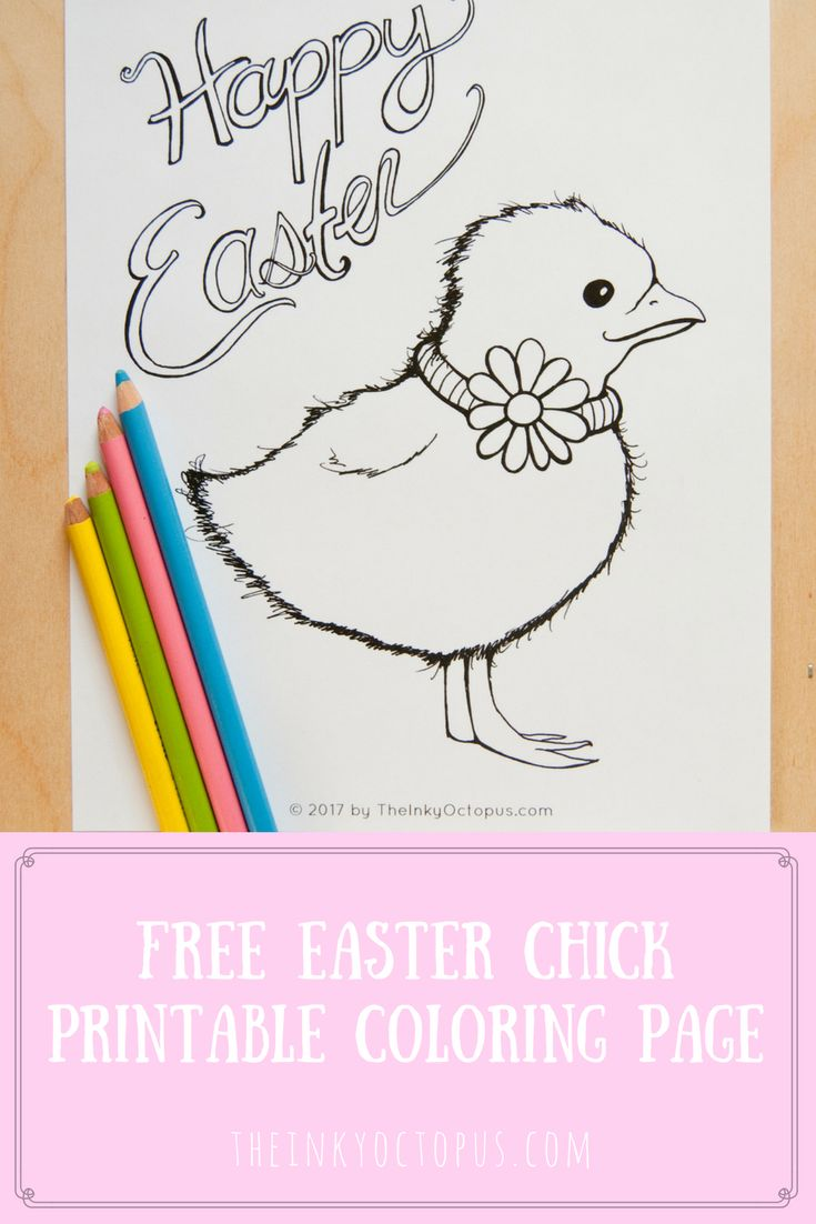 Free Easter Chick Coloring Page From The Inky Octopus