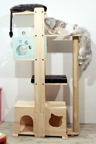 Amazing cat tower