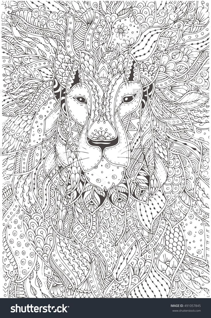 474 best animaux images on pinterest coloring books animals and