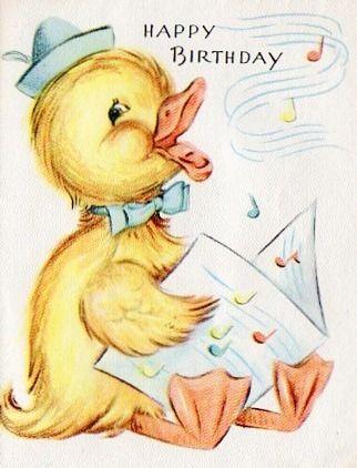 Happy Birthday card duck