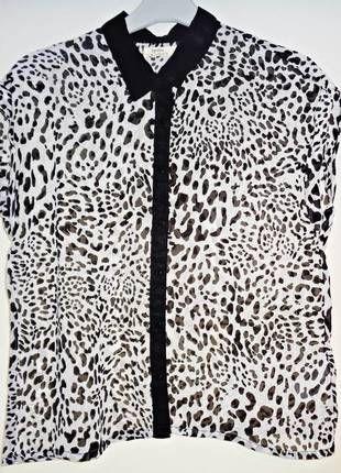 Blusa muy cómoda y fresquita con estampado de leopardo. Un poco transparente pero quedará muy bien con un top negro debajo de ella. Con algún collar, un pantalón ajustado metiendo la camisa por dentro y unos stilettos irás muy elegante.   Compra mi artículo en #vinted http://www.vinted.es/ropa-de-mujer/camisas/332797-camisa-leopardo-de-bershka-m