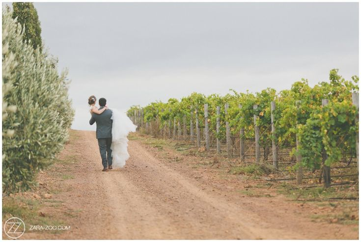 #Wedding couple photos at Gabrielskloof. Groom carrying his bride on a gravel road between the vineyards and olive trees. #ZaraZoo #Weddingphotography