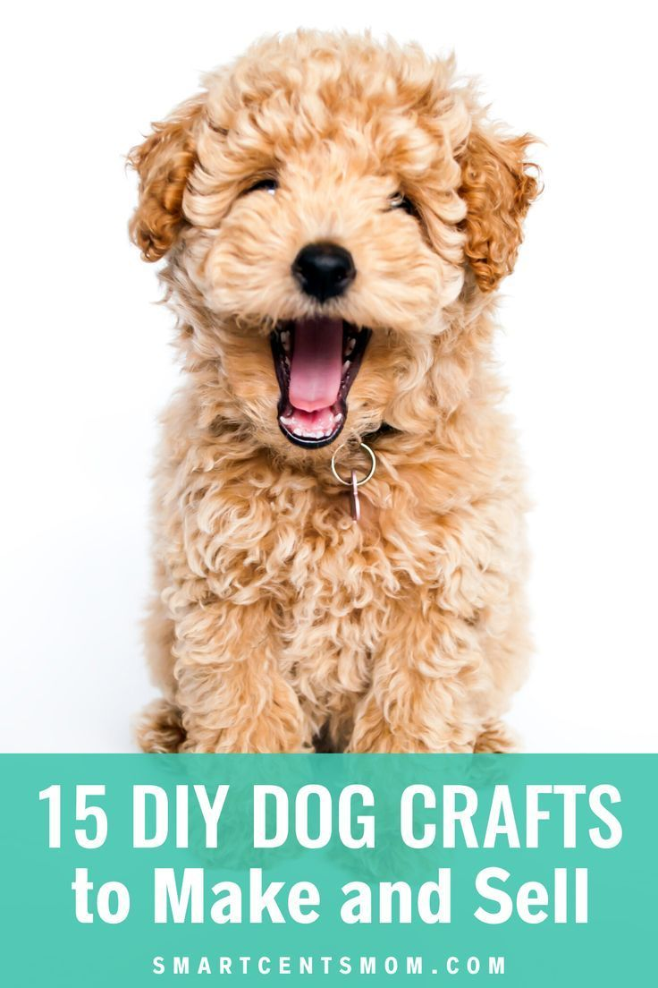 15 Easy Diy Dog Crafts To Make And Sell In 2019 Dog Crafts Best Dogs For Families Best Dogs For Kids