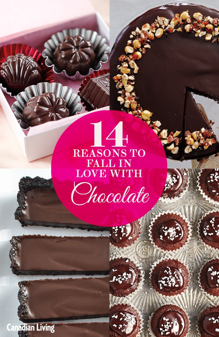 Indulge with 14 delectable chocolate recipes that satisfy your sweet tooth.